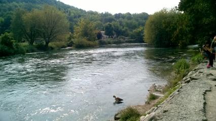 Río Mincio
