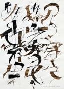 16 Calligrafia, 2015, Inchiostro su carta, 58x42 cm