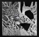 35 Messaggi dalla notte trasparente, 2015 2017, Incisione al laser su plexiglass, 25x25 cm