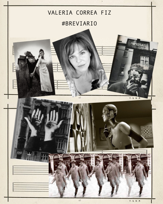 widget #brevario 2019