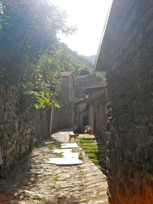 alangtry.Lunigiana5