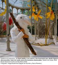 Museo-Reina-Sofía-expone-la-obra-de-Petrit-Halilaj-en-el-Palacio-de-Cristal-Parque-del-Retiro-11