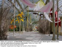 Museo-Reina-Sofía-expone-la-obra-de-Petrit-Halilaj-en-el-Palacio-de-Cristal-Parque-del-Retiro-5-scaled